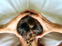 Migraine Acupressure GB20