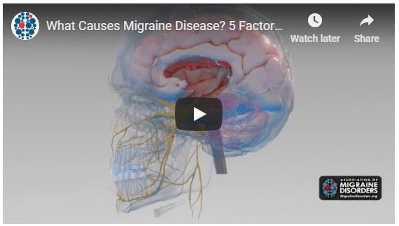 What Causes Migraine Disease? 5 Factors in Migraine Neurobiology. Migraine Disorders @migrainesavvy
