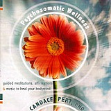 Click here for Psychosomatic Wellness by Candace Pert at iTunes