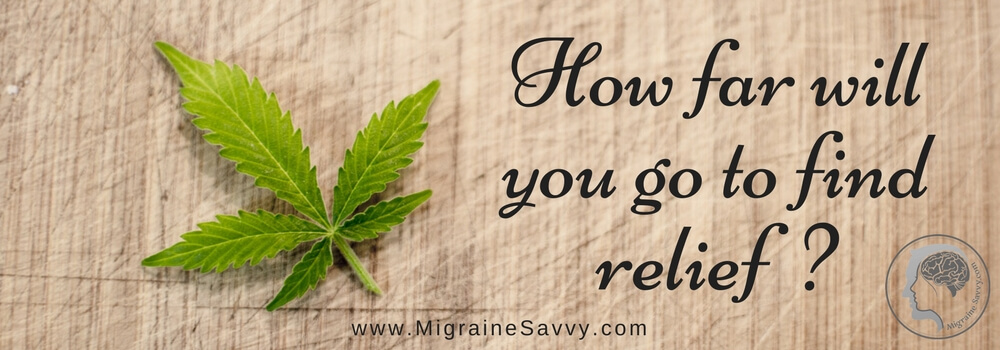 Medical marijuana, cannabis, cannabidiol oil, CBD and migraines. Does it work? @migrainesavvy