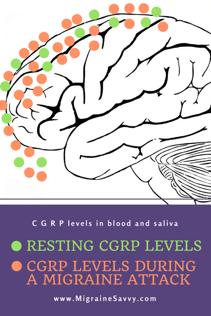 CGRP Drugs for Migraine Prevention