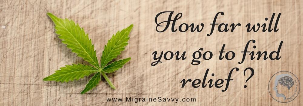 Medical marijuana, cannabis, cannabidiol oil, CBD and migraines. Does it work? @migrainesavvy